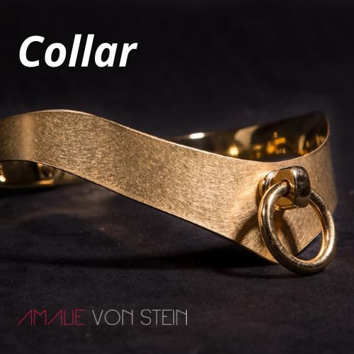 Neu Exklusives Leder-Halsband! Edles BDSM-Halsband, Halsband mit Ring der O.